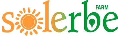 logo solerbe gen 2013 b